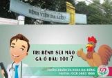 Bệnh viện da liễu trị sùi mào gà không?
