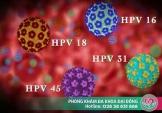 Tìm hiểu về virus gây sùi mào gà - Human Papilloma Virus