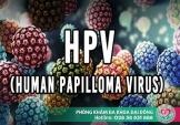 Tìm hiểu về Virus HPV và cách xét nghiệm nhận biết